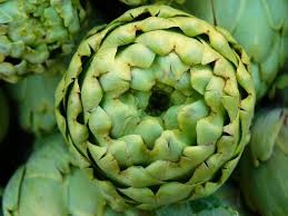 Where can i buy Artichoke Plant?  Find out which local farmer has Artichoke Plant for sale.