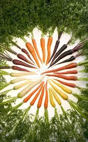 Where can i buy Carrots Plant?  Find out which local farmer has Carrots Plant for sale.