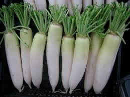 Where can i buy Daikon?  Find out which local farmer has Daikon for sale.