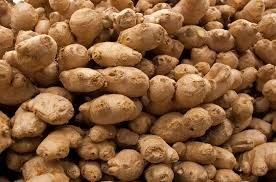 Where can i buy Ginger?  Find out which local farmer has Ginger for sale.