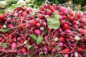 Where can i buy Radish?  Find out which local farmer has Radish for sale.