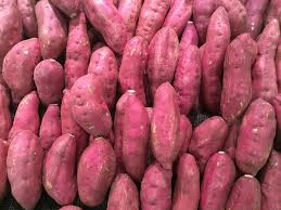 Where can I buy fresh Sweet potato - Red from a local farmer.