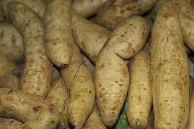 Where can i buy Yam?  Find out which local farmer has Yam