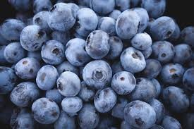 Where can i buy Blueberry?  Find out which local farmer has Blueberry for sale.
