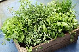 Where can I buy fresh, Hawaii Local Herbs and Spices
