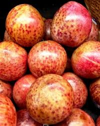Where can i buy Plumcot (or Pluot) Plant?  Find out which local farmer has Plumcot (or Pluot) Plant for sale.