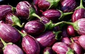 Where can i buy Egg Plant Plant?  Find out which local farmer has Egg Plant Plant for sale.